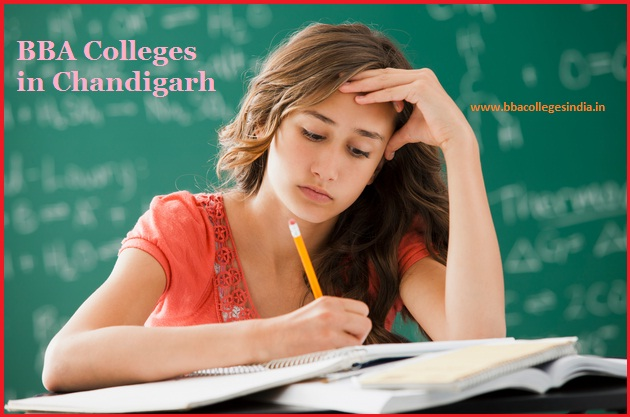 BBA colleges Chandigarh